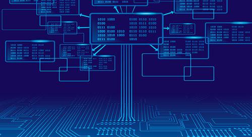 以軟體探測器維護軟體網路的能見度