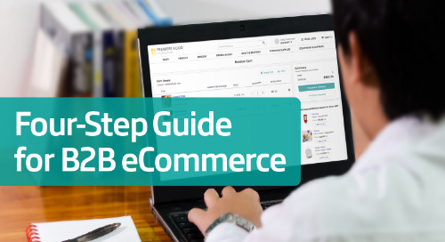 How to Deliver a Consumer-Like eCommerce Experience for B2B