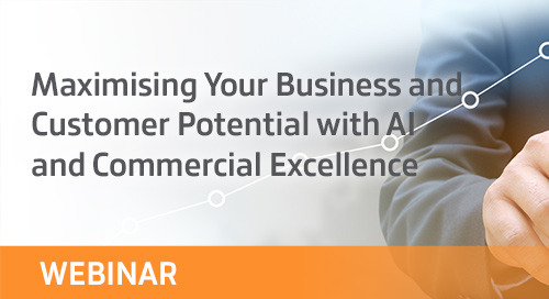 Maximising Your Business and Customer Potential with AI and Commercial Excellence