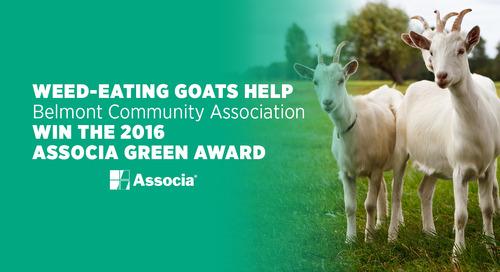 Weed-Eating Goats Help Belmont Community Association Win the 2016 Associa Green Award
