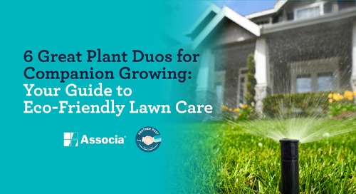 Partner Post: 6 Great Plant Duos for Companion Growing: Your Guide to Eco-Friendly Lawn Care