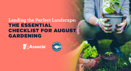 Landing the Perfect Landscape: The Essential Checklist for August Gardening