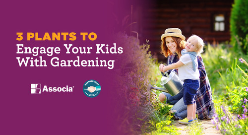 Partner Post: Use These 3 Plants to Engage Your Kids With Gardening
