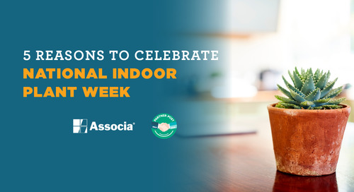 Partner Post: 5 Reasons to Celebrate National Indoor Plant Week