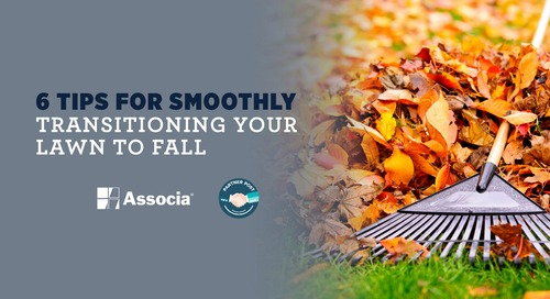 Partner Post: 6 Tips for Smoothly Transitioning Your Lawn to Fall