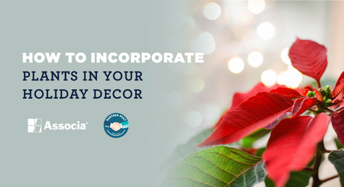 Partner Post: How to Incorporate Plants in Your Holiday Decor