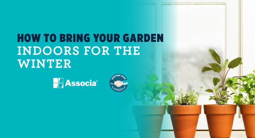 Partner Post: How to Bring Your Garden Indoors for the Winter