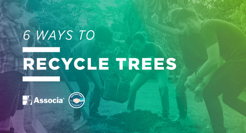 Partner Post: 6 Ways to Recycle Trees