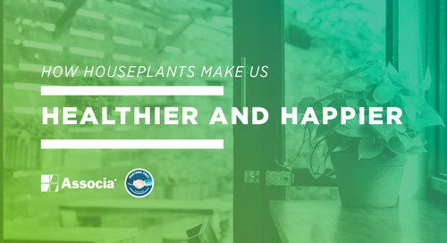Partner Post: How Houseplants Make us Healthier and Happier