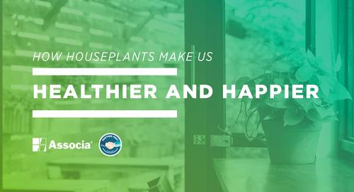 Partner Post: How Houseplants Make us Healthier and Happier