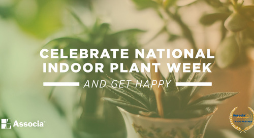 Partner Post: Celebrate National Indoor Plant Week and Get Happy
