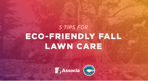 Partner Post: 5 Tips for Eco-Friendly Fall Lawn Care