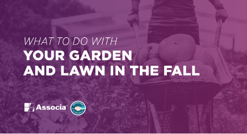 Partner Post: What To Do with Your Garden and Lawn in the Fall