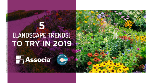 Partner Post: Five Landscape Trends to Try In 2019