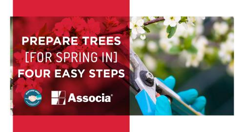 Partner Post: Prepare Trees for Spring in Four Easy Steps
