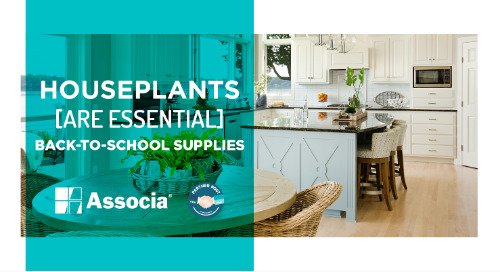 Partner Post: Houseplants Are Essential Back-to-School Supplies