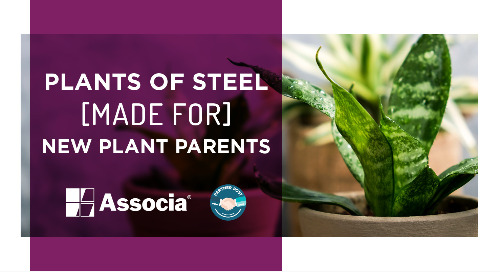 Partner Post: Plants of Steel Made for New Plant Parents