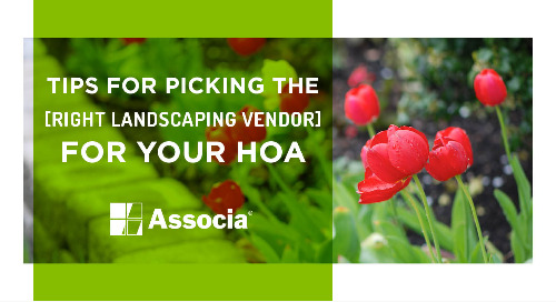 Tips for Picking the Right Landscaping Vendor for Your HOA