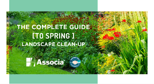Partner Post: The Complete Guide to Spring Landscape Clean-Up