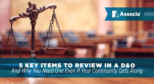 5 Key Items to Review in a D&O (And Why You Need One Even If Your Community Gets Along)