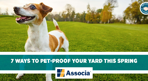 Partner Post: 7 Ways to Pet-Proof Your Yard This Spring