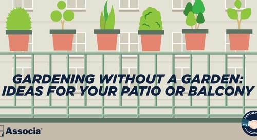 Partner Post: Gardening Without a Garden: Ideas for Your Patio or Balcony