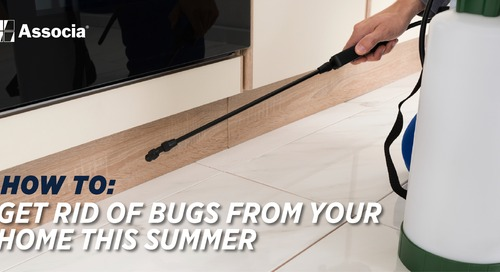 Rid Bugs from Your Home This Summer