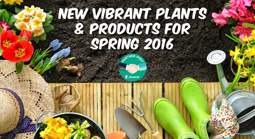 New Vibrant Plants & Products for Spring 2016