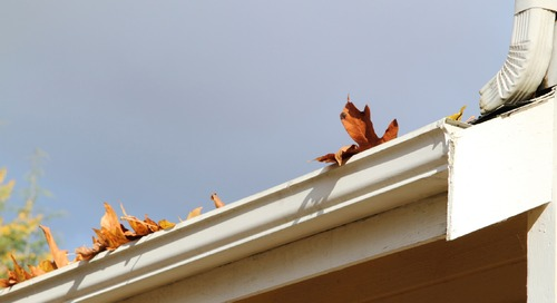 Five Little-Known Consequences of Not Cleaning Your Gutters
