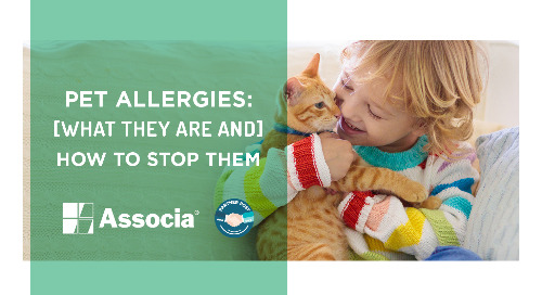 Partner Post: Pet Allergies: What They Are and How to Stop Them