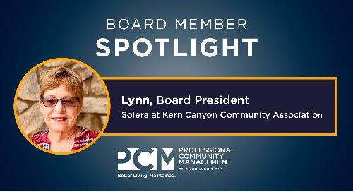 Board Member Spotlight: Lynn