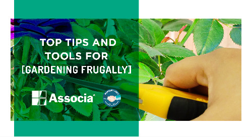 Partner Post: Top Tips and Tools for Gardening Frugally