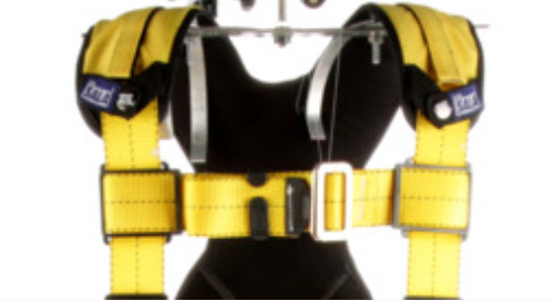 Stop Use and Inspection Notice: Specific 3M™ DBI-SALA® Delta™ Vest-Style Harness (CSA Versions)