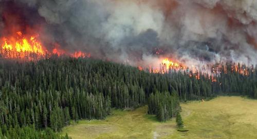 Respirateurs recommandés pour les différentes phases d'un feu de forêt