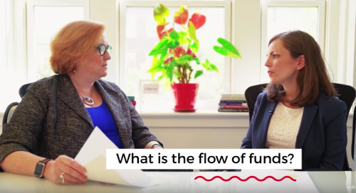 Economic Insights: Flow of Funds
