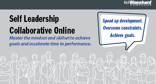 Self Leadership Collaboration Online