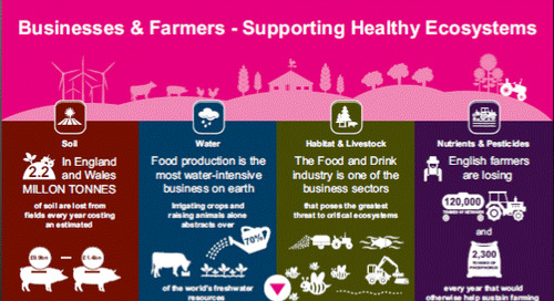 Business and Farmers - Supporting Healthy Ecosystems