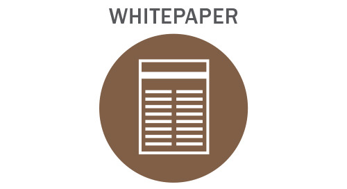 Using the Right Data to Focus in on Credit Invisibles Whitepaper