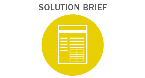Providing Payment Support to Deliver Personalized Consumer Applications Solution Brief