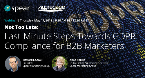On-Demand Webinar: Not Too Late: Last-Minute Steps Towards GDPR Compliance for B2B Marketers