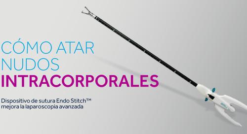 Endo Stitch™