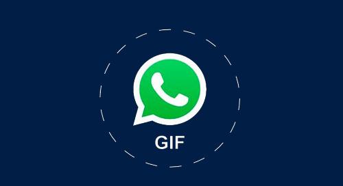 WhatsApp Gifs: A Base de Tudo