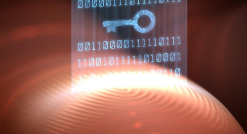 Biometrics -- from the smartphone to the airport