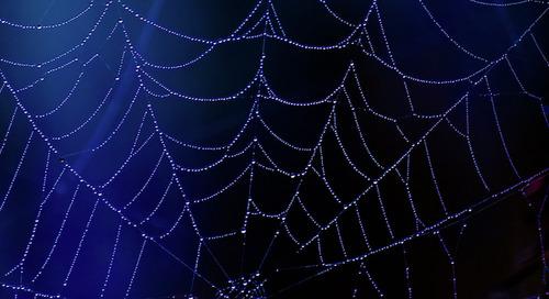 The Dark Web: Marketers' Trick or Threat Intelligence Treat?