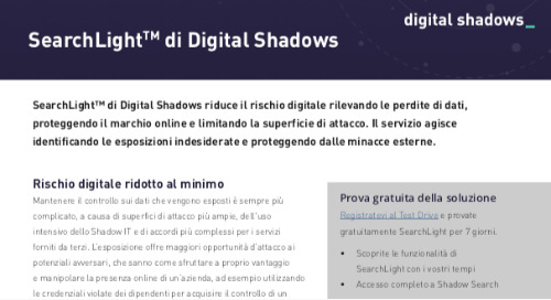 SearchLightTM di Digital Shadows