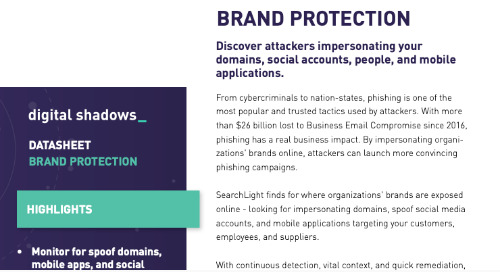 Brand Protection Overview