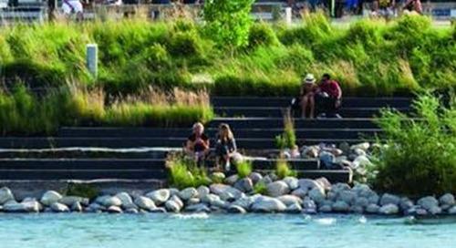 Turning the tide: Helping shoreline communities create ecologically balanced seawalls
