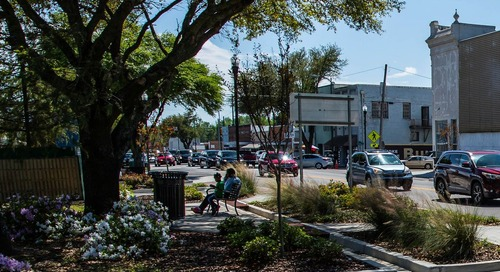 Planting for the future: Enhancing communities with a thriving tree canopy