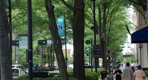 Why planting urban trees is important to communities