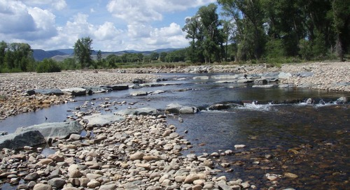 Stream and river restoration — rebuilding the lifeblood that creates thriving communities